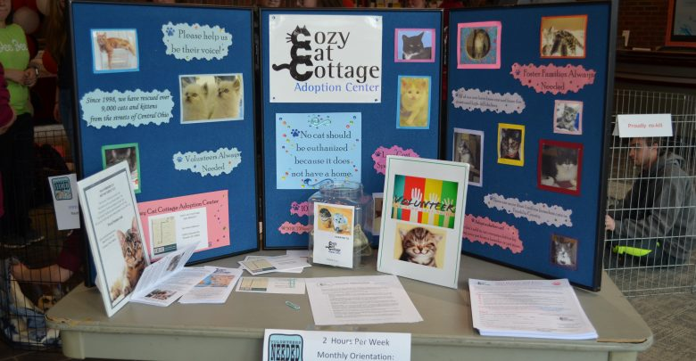 Cozy Cat Cottage Adoption Center displays their mission, volunteering options and donations.