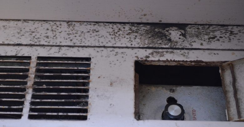 Mold on radiator in room 340 Smith East.